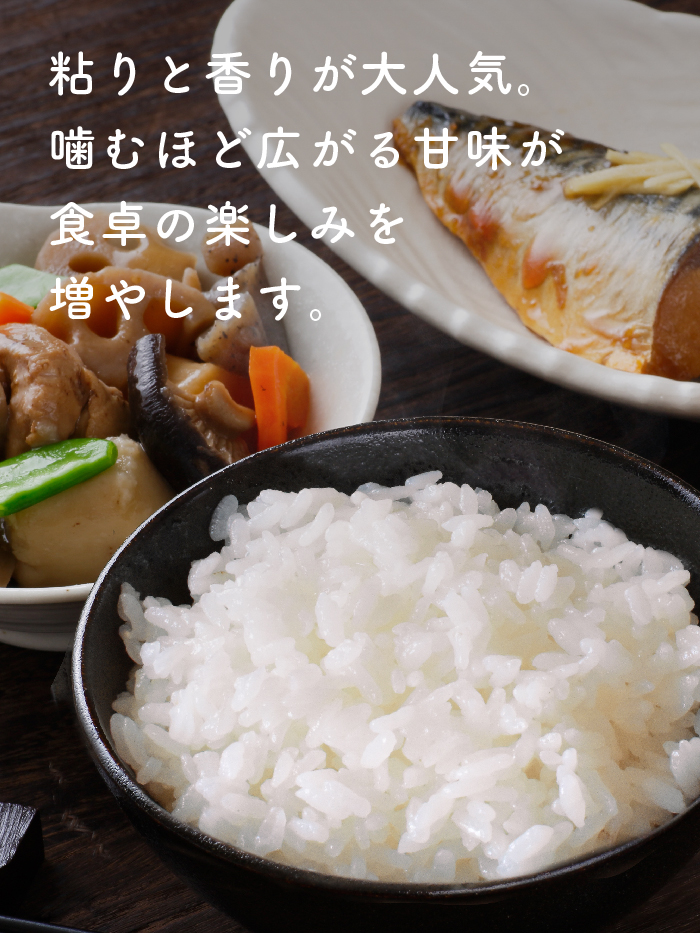 山倉さんのコシヒカリ精米